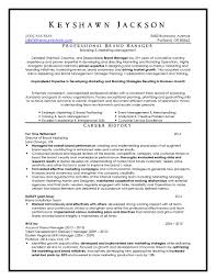 Service Delivery Manager Sample Resume It Service Delivery Manager Resume Sample Best Of Resume Examples 5