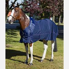 Back On Track Therapeutic Mesh Horse Sheet Back On Track Horze