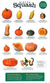 Pumpkin Varieties Chart Roasted Squash With Toasted Quinoa Dates And Sage This Is