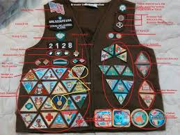 Brownie Try It Placements Girl Scout Brownie Badges Girl