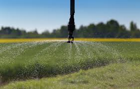 the best drip irrigation systems for