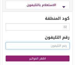 """الآن استعلام فاتورة التليفون الارضي يناير 2020 برقم التليفون"""" نظام ثلاث  شهور """"المصرية للاتصالات billing.te.eg - دليل الوطن"""