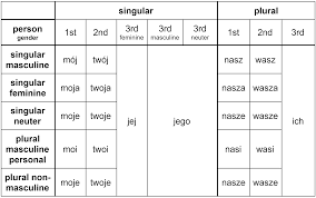 First Second And Third Person Singular And Plural Chart The No Nonsense Guide To Polish Possessive Pronouns