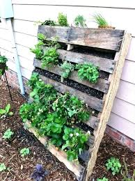 patio vegetable garden apartment ideas innovative ide