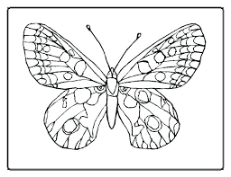 Butterfly Coloring Pages For Adults Mandala Coloring Pages Butterfly