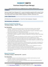 Project Manager Resume Samples Beauteous Business Analyst Project Manager Resume Samples QwikResume