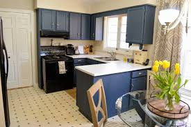 can you paint kitchen cabinets with