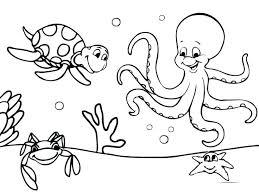Ocean Animals Coloring Pages For Preschool Sea Animals To Color