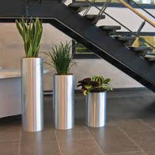 office plant displays. Fine Office Tall Circular Metal Displays In Blythe Valley Business Park Reception To Office Plant T
