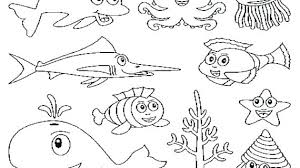 good rainbow fish coloring book and pages sea creatures free slippery