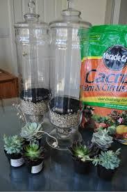 Apothecary Jars Decorating Ideas 100 Lovely Apothecary Jar Ideas The Budget Decorator 66