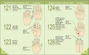 Acupuncture Points Chart Pdf Awesome Body Code Chart Pdf