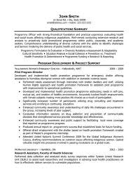 Click Here To Download This Pilot Program Director Resume Template