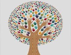 diversity in education essay essay writing service diversity in education essay