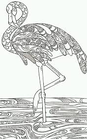 Flamingo Color Page Black And White Drawing Outline For Decorative