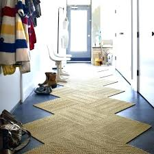 best rug for dogs entry way wont on