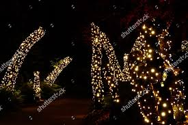 Christmas Lights Buckinghamshire Enchanted Forest Illuminated Editorial Stock Photo Stock