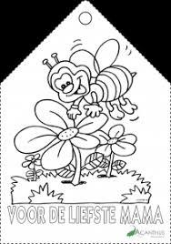 Moederdag Acanthus Bloememotie Uw Bloemist In Emmeloord En Ook