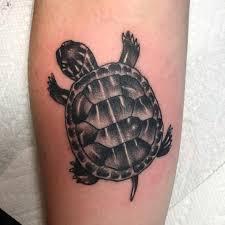 тату черепахи на предплечье парня фото рисунки эскизы