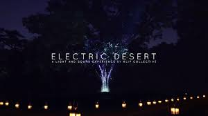 Desert Botanical Garden Light Display Electric Desert A Light And Sound Experience