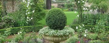 Small Picture Garden Design London Landscape Gardeners Ginkgo Gardens