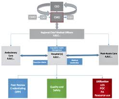 Fqhc Organizational Chart Changing Roles And Skill Sets For Chief Medical Officers
