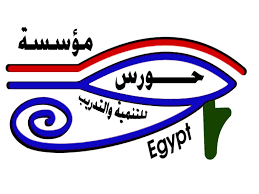 المرحلة الثالثة لمشروع دعم الشباب المصري