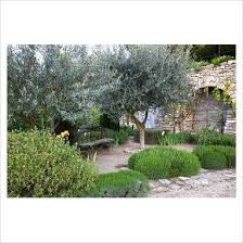 Small Picture 90 best Provence Garden images on Pinterest Provence garden