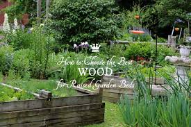 best wood for raised garden beds. How To Choose The Best Wood For Raised Garden Beds