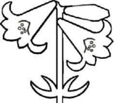 花の白黒イラスト 素材屋じゅんのモノクロ画像絵フリー無料素材