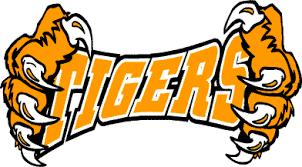 Image result for tiger clip art