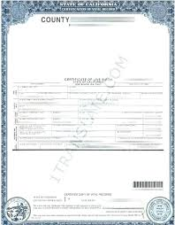 Pictures Of Blank Birth Certificates Interesting 48 Superb Blank Birth Certificate Template Free Altemeierei