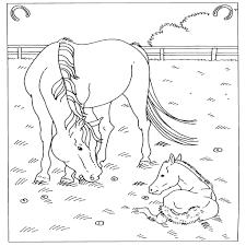 25 Nieuw Paarden Moeilijk Kleurplaat Mandala Kleurplaat Voor Kinderen