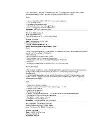 Custom Protection Officer Sample Resume Awesome Sarm Software Resume