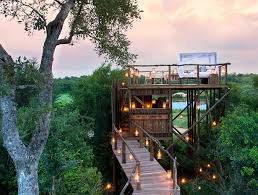 Very Small Luxury Hotels Luxury Boutique Hotels  African Eco LodgesTreehouse Hotel Africa