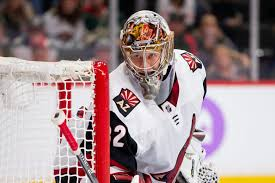 Arizona Coyotes Depth Chart Starters And Spot Seekers A Complete Guide To The Arizona