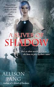 A Sliver of Shadow Allison Pang 9781501107054 Amazon Books