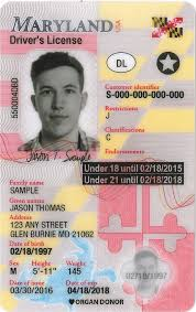 - License Maryland Drivers B Windseven Restriction