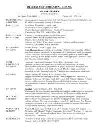 Example Of A Chronological Resume Resume For Your Job Application