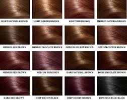 Shades Of Brown Color Chart Different Shades Of Brown Hair Color Chart Find Your