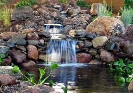 Small Picture 10 Cool Water Garden Ideas Whimsical naturalistic garden design