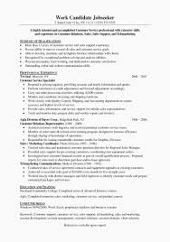 Most Professional Resume Format Simple Most Professional Resume Format 28 Great Resume In English Awesome