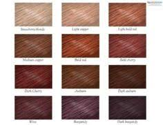 Solfine Hair Color Chart Systematic Solfine Color Line Chart Buy Crema Colour 5rs