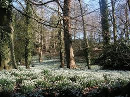 Small Picture Garden Design Jobs Gloucestershire izvipicom