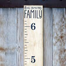 Vinyl Growth Chart Little Acorns Diy Vinyl Growth Chart Ruler Decal Kit Our Growing Family Modern