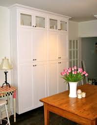 Stand Alone Kitchen Furniture Kitchen Pantry My Home Pinterest Kitchen Pantry Cabinets