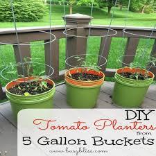 garden pots cheap. Superior Cheap Garden Pots And Planters #6 DIY Tomato From 5 Gallon Buckets R