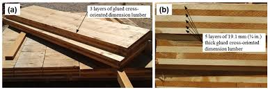 Structural Wood Design A Practice Oriented Approach Buildings Free Full Text Mass Timber Rocking Panel