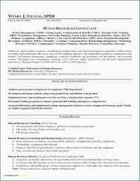 Safety Manager Resume International Business Manager Resume Sample Valid Resume Samples