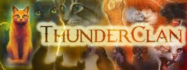 Thunderclan: the Brave and Loyal Images?q=tbn:ANd9GcTGkU2TIH2cT0l8ozDFSNxFNUuGirr9tnt4PILg420J8fswtuaX